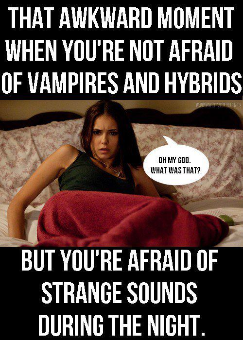 Funny-Funny-TVD-the-vampire-diaries-tv-show-25459501-500-700