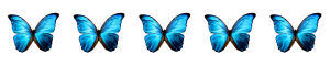 6ecda-5buterflies