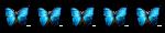5 buterflies